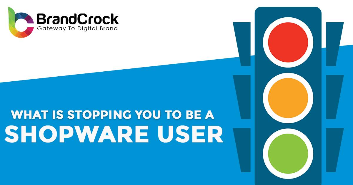 Offshore Shopware Development